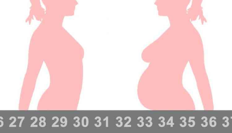 Hamilelik Hesabı Nasıl Yapılır Hamilelik Kaç Hafta Sürer Kaç Aylık